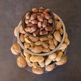 Assortiment van noten in hun shell Verschillende soorten noten binnen Royalty-vrije Stock Afbeelding