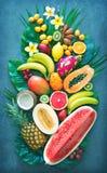 Assortiment van tropische vruchten met palmbladen en exotische bloem Stock Afbeeldingen
