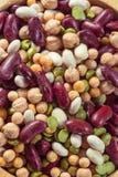 Assortiment van verschillende types van bonen - rode bonen, kekers, p stock foto's