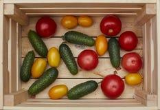 Assortimento degli ortaggi freschi in una scatola di legno fotografie stock libere da diritti