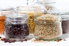 Assortimento dei diversi cereali e dei legumi, primo piano Fotografia Stock Libera da Diritti