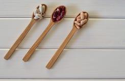 Assortimento dei fagioli in cucchiai di legno immagine stock libera da diritti