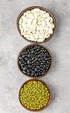 Assortimento dei fagioli secci - bianchi, neri e verdi Immagini Stock Libere da Diritti