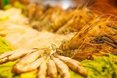 Assortimento dei frutti di mare: Disposizione vigorosa congelata fresca di varietà del gamberetto e del pesce del gamberetto del  Immagine Stock