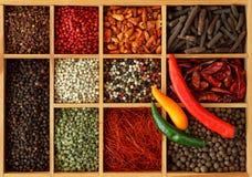 Assortimento dei granelli di pepe e del peperoncino rosso Fotografie Stock Libere da Diritti