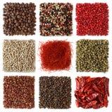 Assortimento dei granelli di pepe e del peperoncino rosso Immagini Stock