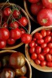 Assortimento dei pomodori Fotografia Stock