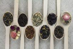 Assortimento dei tipi differenti di tè in un cucchiaio di legno Immagine Stock Libera da Diritti