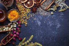 Assortimento del tè asciutto del fiore Immagine Stock Libera da Diritti
