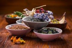 Assortimento del tè della frutta e di erbe Fotografia Stock