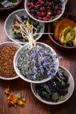 Assortimento del tè della frutta e di erbe Immagini Stock