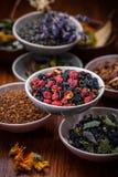 Assortimento del tè della frutta e di erbe Immagine Stock Libera da Diritti
