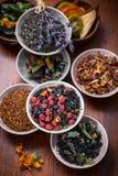 Assortimento del tè della frutta e di erbe Fotografie Stock