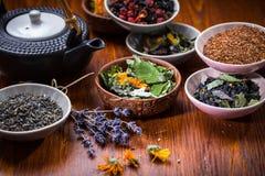 Assortimento del tè della frutta e di erbe Fotografia Stock Libera da Diritti