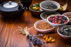 Assortimento del tè della frutta e di erbe Immagini Stock Libere da Diritti