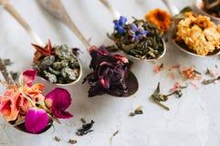 Assortimento del tè verde asciutto del fiore e di erbe in cucchiai su w Immagini Stock Libere da Diritti