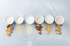 Assortimento del vegano del latte organico del diario non Fotografia Stock