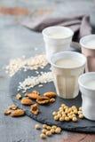 Assortimento del vegano del latte organico del diario non Fotografie Stock