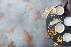 Assortimento del vegano del latte organico del diario non Immagine Stock