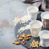 Assortimento del vegano del latte organico del diario non Immagini Stock