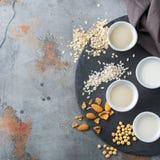 Assortimento del vegano del latte organico del diario non Immagine Stock Libera da Diritti
