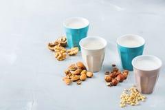 Assortimento del vegano del latte organico del diario non dai dadi Immagini Stock Libere da Diritti