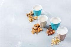 Assortimento del vegano del latte organico del diario non dai dadi Fotografia Stock Libera da Diritti