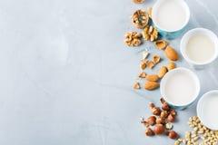 Assortimento del vegano del latte organico del diario non dai dadi Fotografie Stock