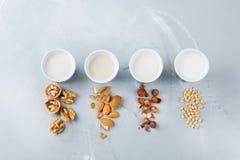 Assortimento del vegano del latte organico del diario non dai dadi Fotografie Stock Libere da Diritti