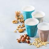 Assortimento del vegano del latte organico del diario non dai dadi Fotografia Stock