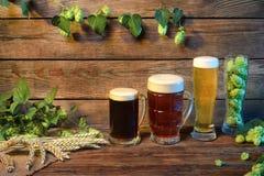 Assortimento della birra sulla tavola di legno nella barra o pub decorato su fondo di legno Fotografia Stock