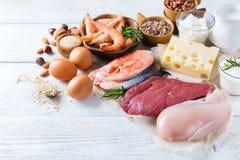 Assortimento della fonte sana della proteina e dell'alimento del body building Immagine Stock