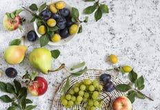 Assortimento della frutta fresca di estate - uva, pere, mele, prugne su un fondo leggero, vista superiore Fotografie Stock