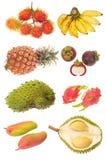 Assortimento della frutta tropicale Fotografia Stock