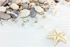 Assortimento delle conchiglie, delle pietre marine e delle stelle marine sulle sedere di legno Fotografia Stock Libera da Diritti