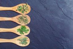 Assortimento delle erbe Fotografia Stock Libera da Diritti
