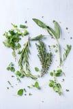 Assortimento delle erbe fresche Immagini Stock Libere da Diritti