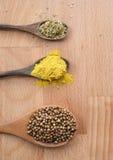 Assortimento delle spezie in cucchiai di legno su fondo di legno Fotografia Stock