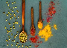 Assortimento delle spezie e delle erbe indiane in cucchiai di legno su fondo scuro Il concetto di alimento vegetariano, spazio de Fotografie Stock