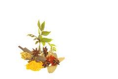 Assortimento delle spezie utilizzate nella fabbricazione del curry fotografie stock libere da diritti