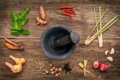 Assortimento di alimento tailandese che cucina gli ingredienti Ing rosso della pasta di curry Immagini Stock Libere da Diritti