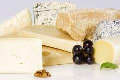 Assortimento di formaggio Fotografia Stock Libera da Diritti