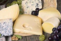 Assortimento di formaggio Immagini Stock