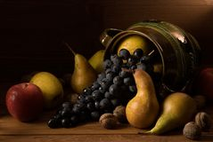 Assortimento di parecchia frutta di autunno fotografia stock