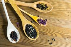 Assortimento di tè asciutto Immagine Stock
