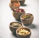 Assortimento di tè asciutto in ciotole della noce di cocco Immagini Stock