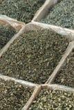Assortimento di tè verde Immagini Stock