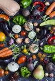 Assortimento di verdure delle verdure - zucca, melanzana, peperoni, carote, pomodori, cipolle, aglio, barbabietole del raccolto d Fotografia Stock
