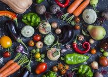 Assortimento di verdure delle verdure - zucca, melanzana, peperoni, carote, pomodori, cipolle, aglio, barbabietole del raccolto d Fotografia Stock Libera da Diritti