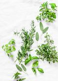 Assortment of aromatic garden herbs on a light background-tarragon, thyme, oregano, basil, sage, mint. Healthy ingredients, top vi royalty free stock photography